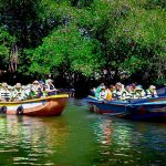 Madu River Baot Safari