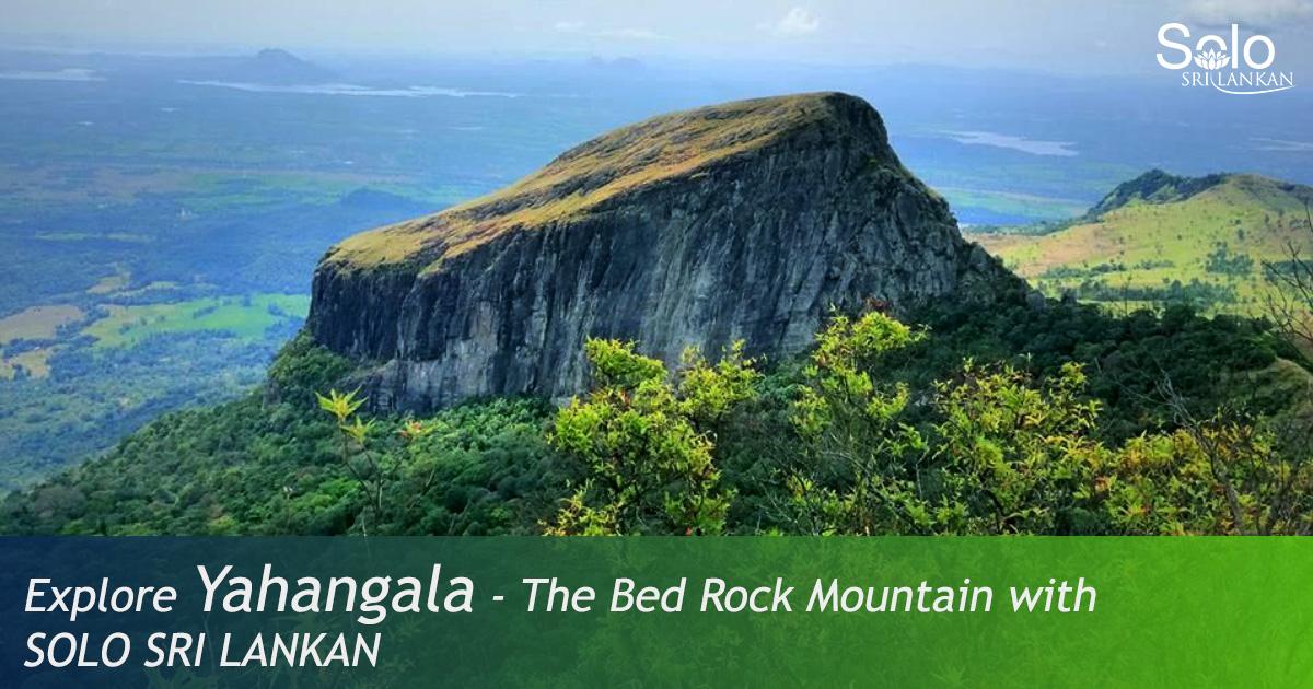 YAHANGALA – BED ROCK